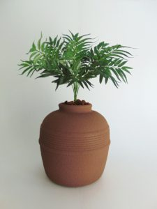 Red Clay Phoenix Palm
