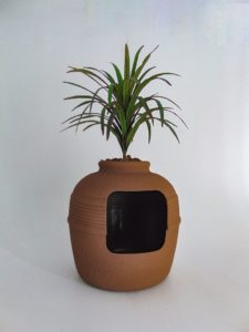 Red Clay New Yucca